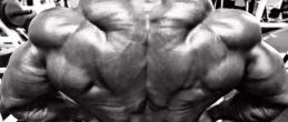 Голям лош гръб