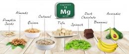 Храни богати на магнезий. Дневни дози