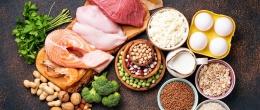 Каква е разликата между животински и растителни протеини