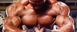 Мускулна маса веднага след 6-тата седмица