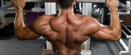 Тренировка за максимална мускулна маса (част 2)