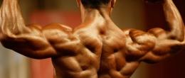Тренировка за плътен гръб