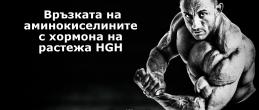 Връзката на аминокиселините с хормона на растежа (HGH)