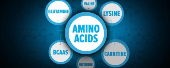Аминокиселини: Дефиниция, Видове, Ползи и Хранителни източници