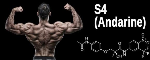 Андарин -S4 - изгаряне на мазнини, без загуба на мускулна маса