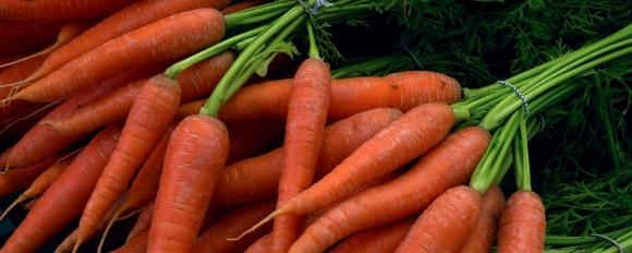 Какво прави морковите и сокът от моркови толкова ценни?