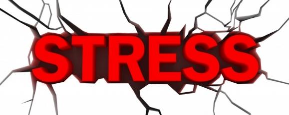 Стрес и Холестерол